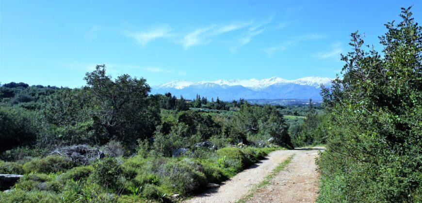 Πωλείται γωνιακό οικόπεδο άρτιο και οικοδομήσιμο 2300 τ.μ.  στην Αλμυρίδα Αποκορώνου.