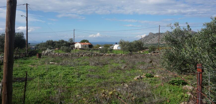 Οικόπεδο στο Χορδάκι Ακρωτηρίου εντός σχεδίου 502τμ .